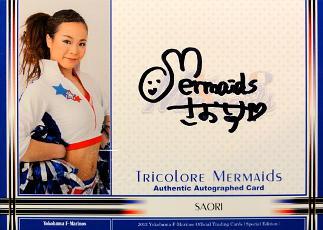 横浜Fマリノス オフィシャルカード 2013 スペシャルエディション